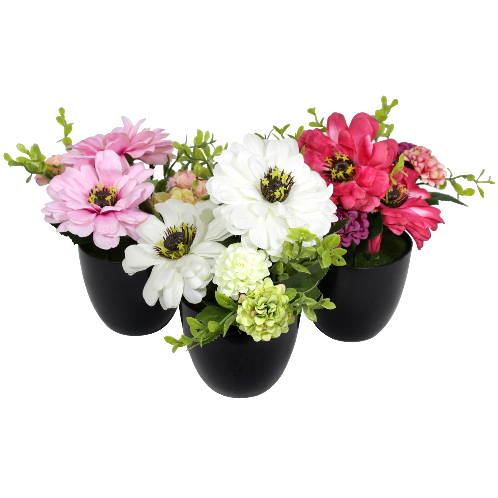GERBERA & MUM 19CM IN 9CM PLASTIC POT 3 ASSORTED COLOURS