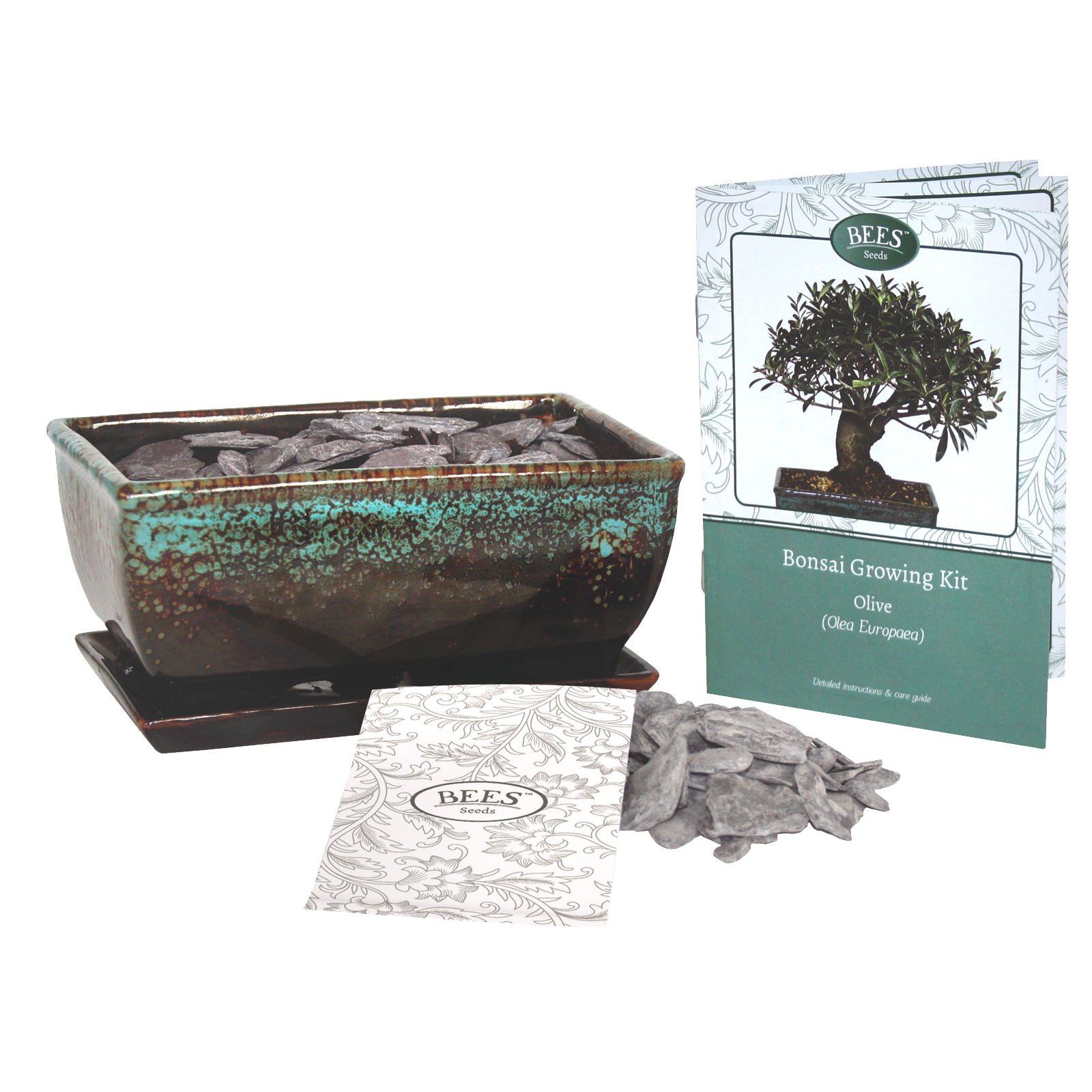 BEE FRIENDS BONSAI GROWING KIT OLIVE